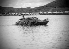 Totora collector - Uros: people of the lake