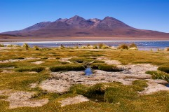 Green places in Bolivian Altiplano